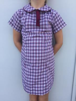 Picture of Yarrilee State School Dress